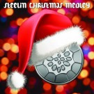 Tracy Thornton - Steelin' Christmas Medley - Single - Digital Album