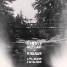 Arnold Dreyblatt & Megafaun - Appalachian Excitation